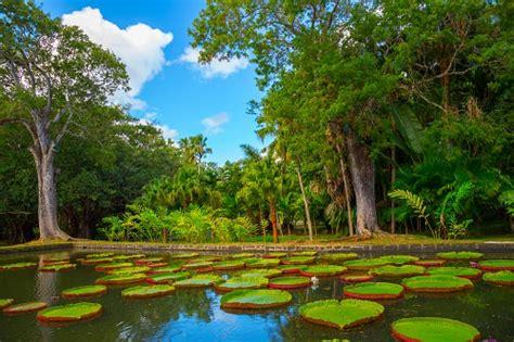 most beautiful gardens in the world 10 beautiful botanical gardens in the world travel