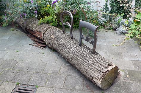 tree trunk benches droog design tree trunk bench surrounding com