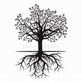 Family Tree Roots Background | 450 x 449 jpeg 37kB