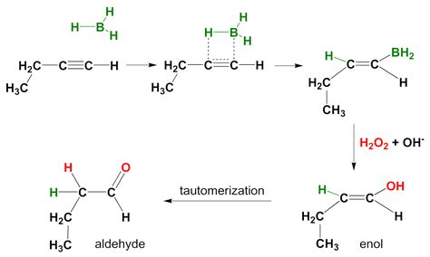 2 hexene hydration reaction file alkyne hydroboration en png wikimedia commons