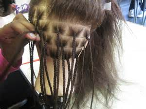 plaits nature hairstyles single plaits natural hair worldofbraiding blog