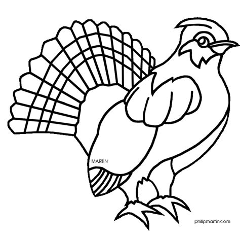 grouse coloring pages coloring pages