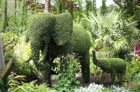 Paultons Park information archives bespoke topiary plant sculptures