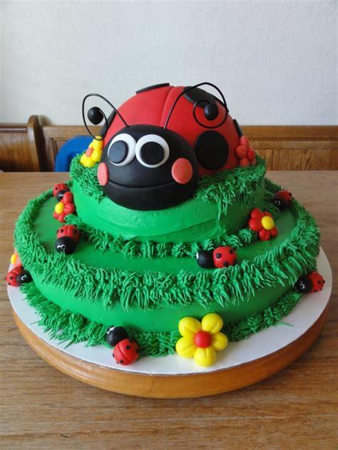 exterminators palm gardens fl 17 best images about ladybug on birthday