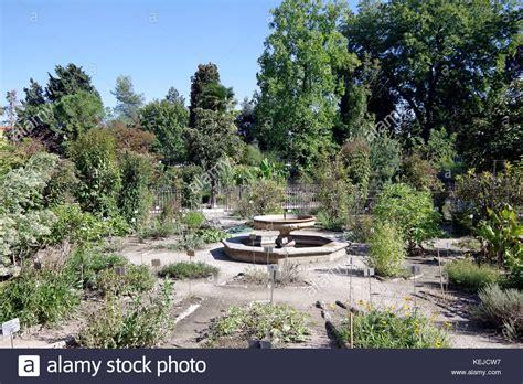 Padua Gardens Stock Photos Padua Gardens Stock Images Oldest Botanical Garden In The World