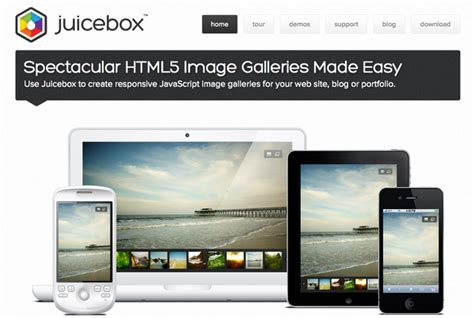 embedding juicebox gallery in adobe muse