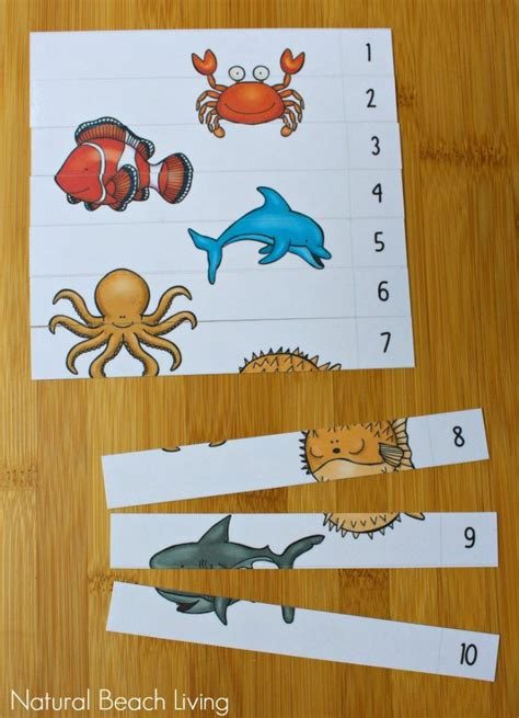 kindergarten activities under the sea the best ocean animals preschool activities and printables