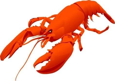 lobster svg  lobster svg