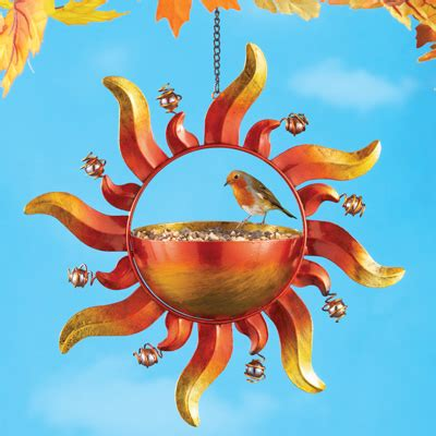 hanging sun bird feeder from collections etc