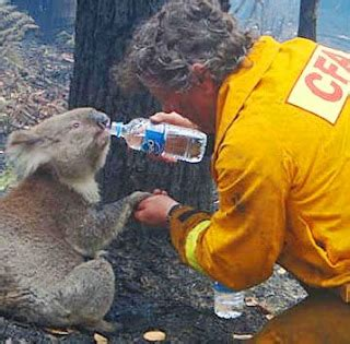 outback snack: australia heat waves drought fire floods