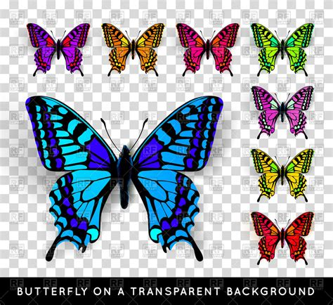 Free Background Check No Fee Butterfly Clipart No Background Www Pixshark Images Galleries With A Bite