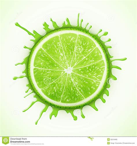 Reader Tip Add A Splash Of Lime To Your Water by Fresh Lime With Splash Royalty Free Stock Photo Image