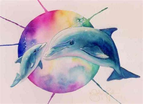 colorful dolphin wallpaper wallpapersafari