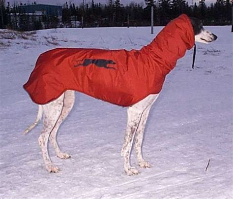 sewing pattern greyhound coat sighthound hooded coat pattern to sew i m not sure about