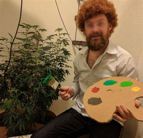 bob ross painting reddit explore reddit r microgrowery