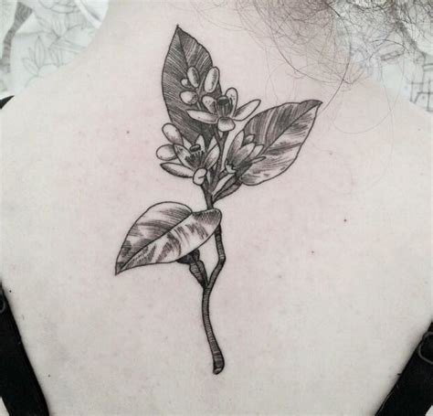orange blossom tattoo 129 best images about tattoos on compass