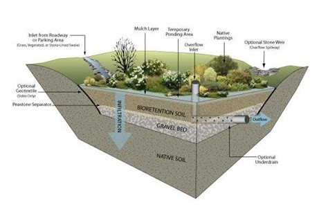 rain garden cross section rain garden cross section environmental services kiosk