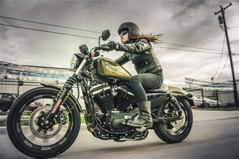 Harley Davidson For Beginners by The Best Motorcycles For Beginners Digital Trends