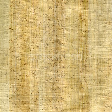 Papyrus Paper - papyrus paper background stock photo 169 marek uliasz