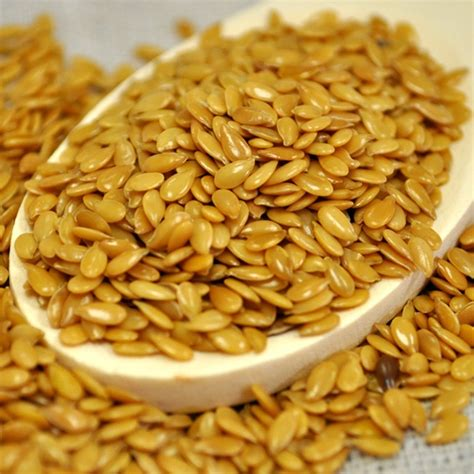 wholesale golden flax seeds sold in 25 pound containers