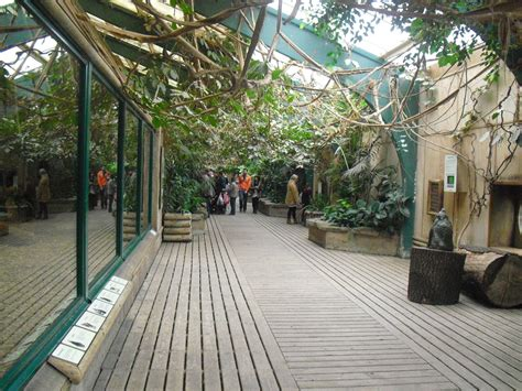 Monkey House by Inside The Monkey House 16 02 2011 Zoochat