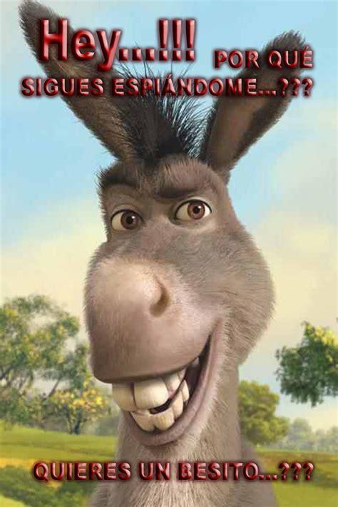 imagenes de amor chistosos del burro shrek burro shrek frases imagui