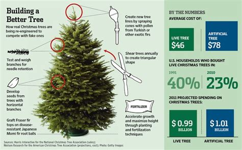 catchy collections of average cost of christmas tree