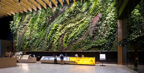 vertical indoor garden indoor vertical garden at atrium 187 home decorations insight