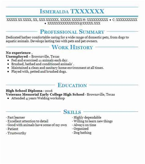 Eye Grabbing No Experience Resumes Sles Livecareer Resume For Someone With No Experience Template