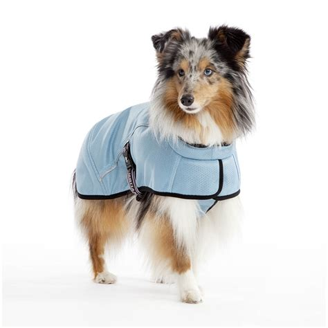 cooling coat jackets and cooling coats still available dogfather and co canine retail