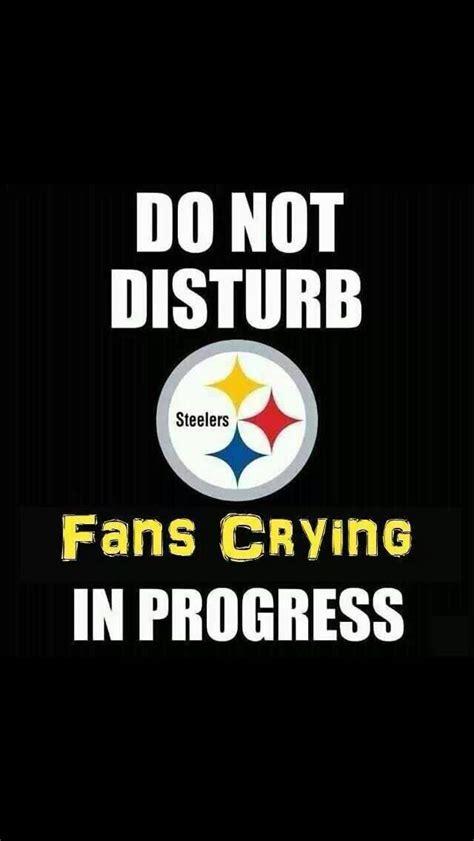 Steelers Suck Meme - 82 best steelers suck images on pinterest cincinnati