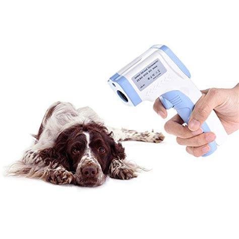 lade a infrarossi per animali termometro infrarossi veterinario artinscena