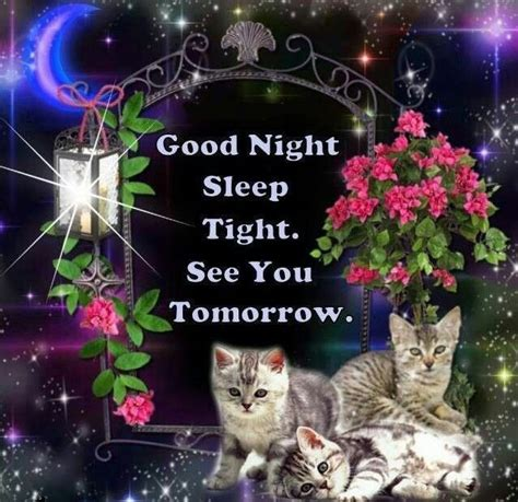 libro goodnight sleep tight 1000 images about good night on good night sweet dreams good night my friend