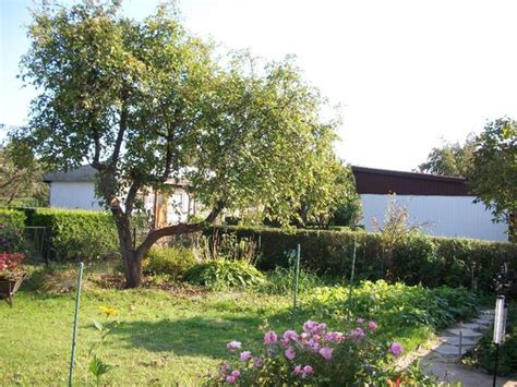 kleingarten kaufen in berlin idyllischer kleingarten in ruhiger atmosph 228 re in berlin