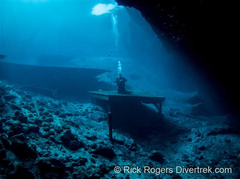 blue dive diving the blue grotto florida a taste of cavern diving