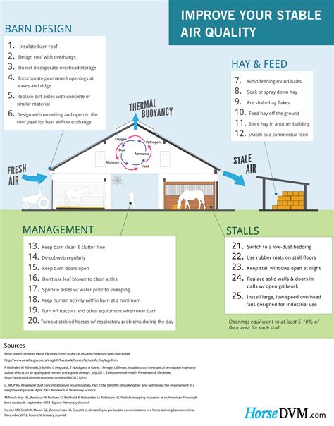 horsedvm infographic 25 ways to improve your stable s