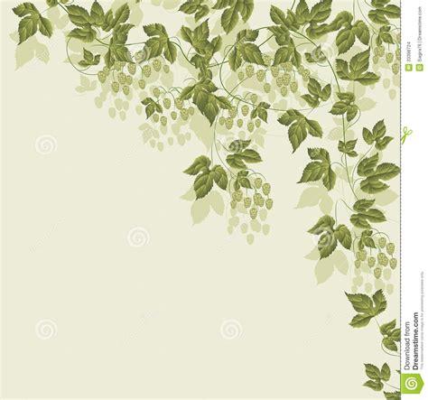 imagenes verdes para niños ramas con hojas verdes marcos para fotos infantiles ninos