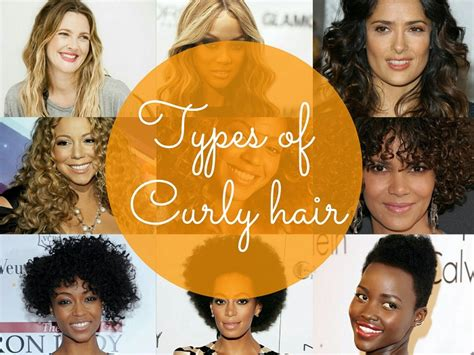 Types Of Curly Hair by Types Of Curly Hair Curlsandbeautydiary