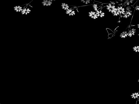 imagenes hd fondo negro fondos de pantalla hd color negro imagui