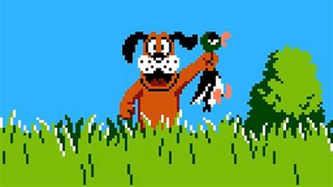 Duck Hunt carter44 nails this duck hunt speedrun ign