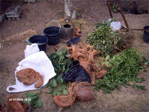 membuat pupuk hidroponik cair petani karawang membuat pupuk organik cair sendiri share