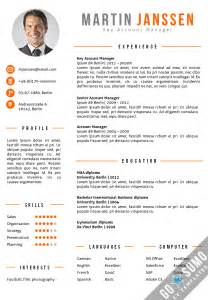 cv template berlin go sumo cv template