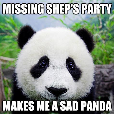 Meme Panda - sad panda meme memes