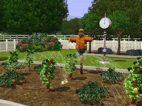 Penelopet S Community Vegetable Garden Community Vegetable Gardens