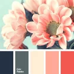 color palette ideas 25 best ideas about color schemes on color
