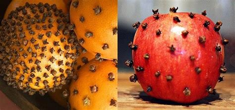 how to get rid of fruit flies in the house how to get rid of fruit flies naturally using cloves 171 food hacks daily