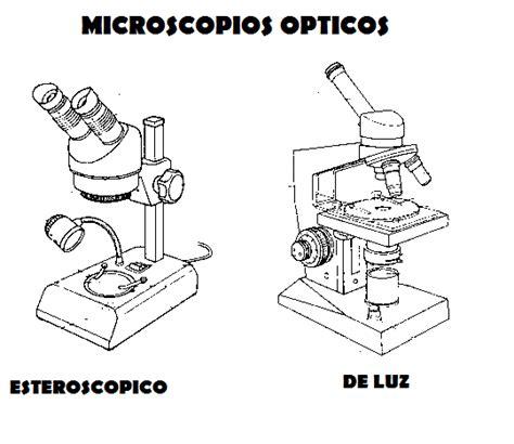 imagenes de un microscopio para dibujar faciles manual de osteolog 237 a antropol 243 gica p 225 gina 2
