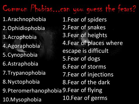 8 Most Common Phobias And How To Fight Them by A2 Psychology Cie Phobias