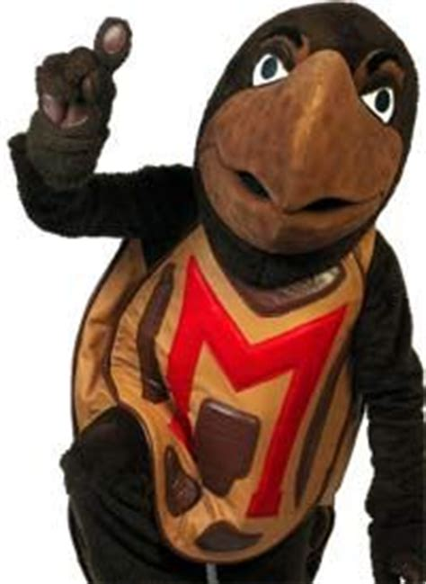 related keywords & suggestions for testudo mascot