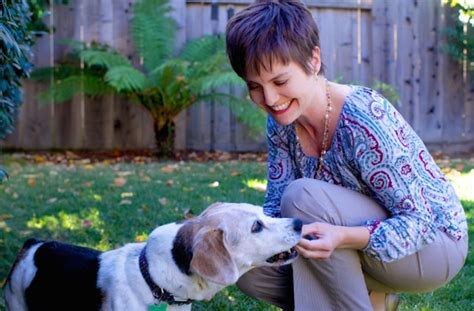 Homeless Mba From Stanford by These Save Dogs In The Nerdiest Way Possible With